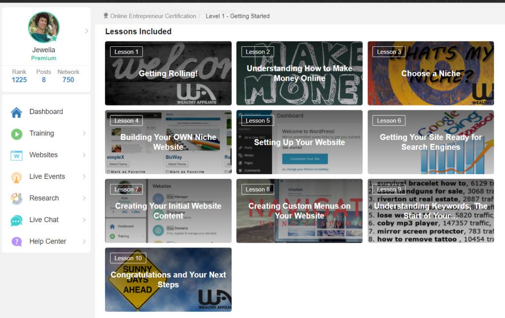 Online Entrepreneur Certification - Level 1 Lessons