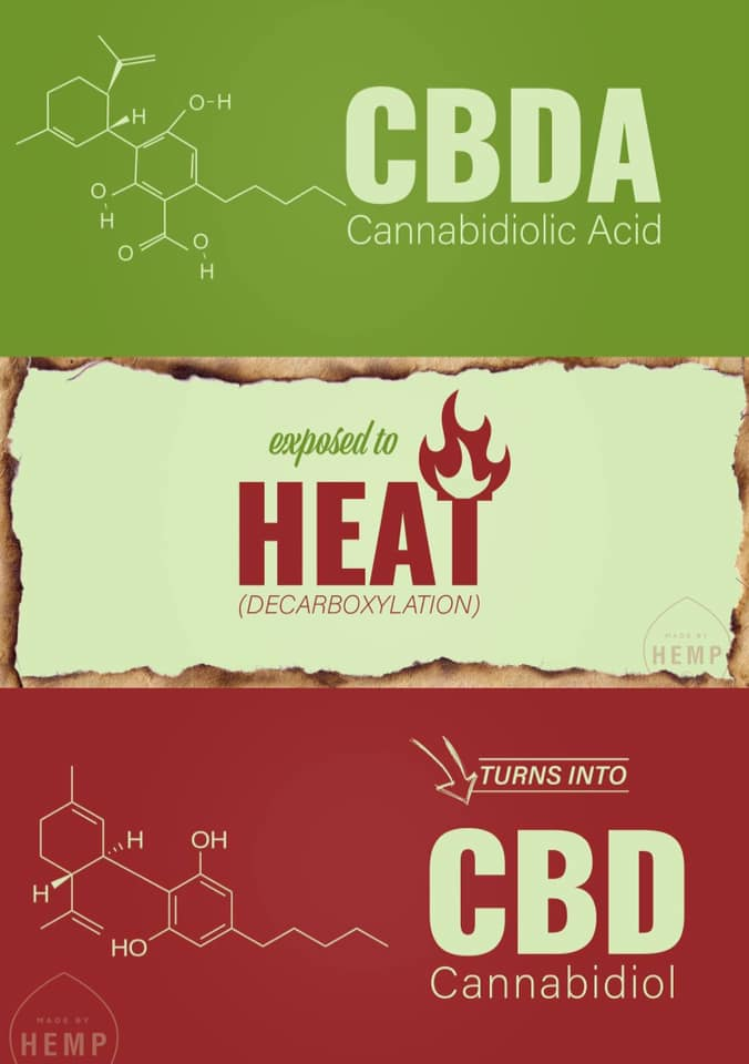 CBD-A turns into CBD through decarboxylation, which occurs when cannabis is exposed to heat.