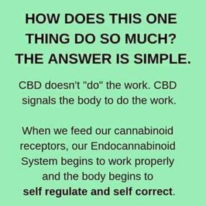 How does CBD do so much? It signals our Endocannabinoid System to self regulate and self correct.