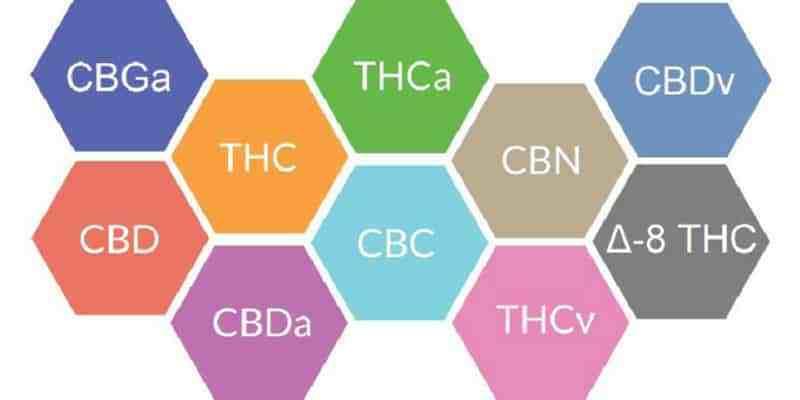 Most Common Cannabinoids