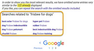 "The Bottom of the Last Page in Google Search Results; ""Frisbee for dogs"" example"