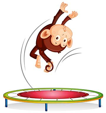 Bouncing Monkey