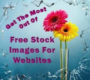 "Stock image of 2 Gerbera flowers with the post title text: ""Get The Most Out Of Free Stock Images For Websites"""