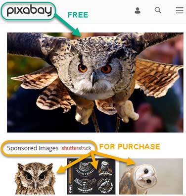 Pixabay.com royalty-free photo of an owl for free and sponsored Shutterstock images advertised below.